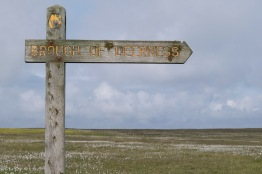 Orkney-8