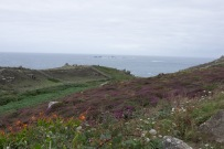 Cornwall-7