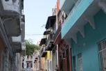 Lena San Juan-5